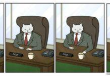 Quando in ufficio comanda il gatto