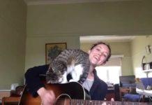 Serenata per il gatto George