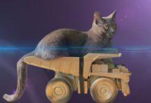 Fast and furious 8 - il trailer gattoso