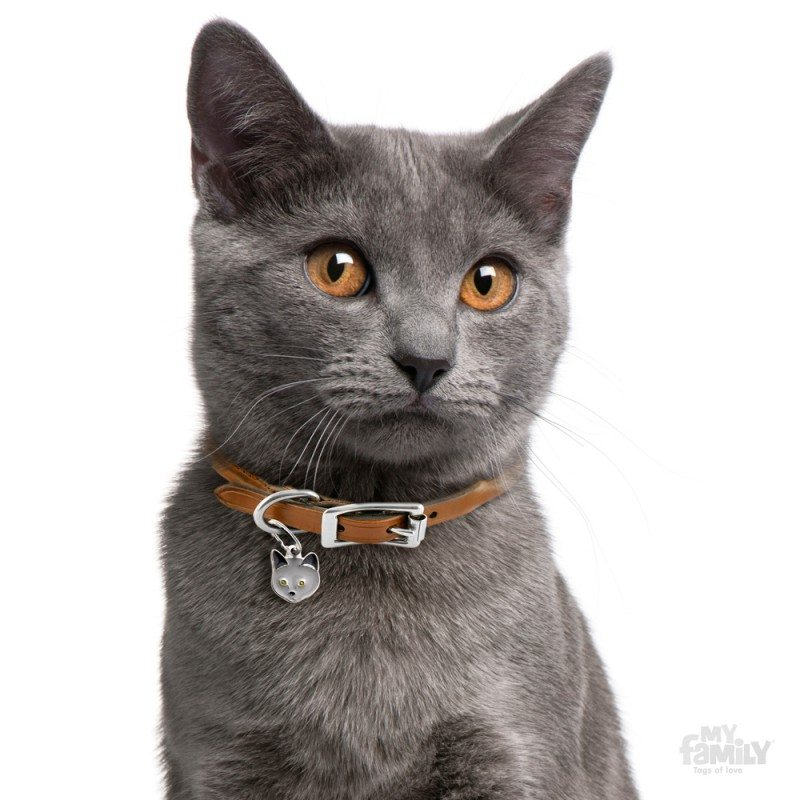 Medaglietta gatto