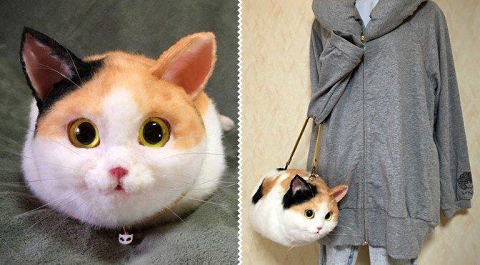 In giappone spopola la moda delle borse gatto gattissimi - Che malattie portano i gatti ...
