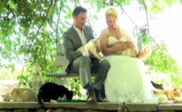 Dominic Husson e Louise Véronneau, neosposini, con i gatti