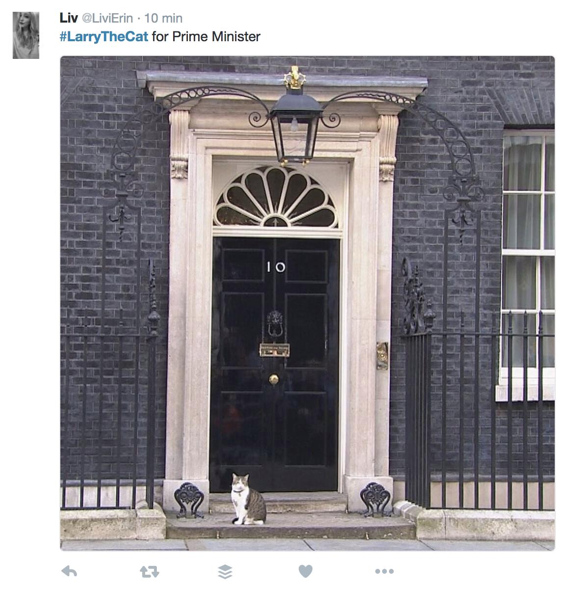 Tweet su Larry, il gatto di Gabinetto