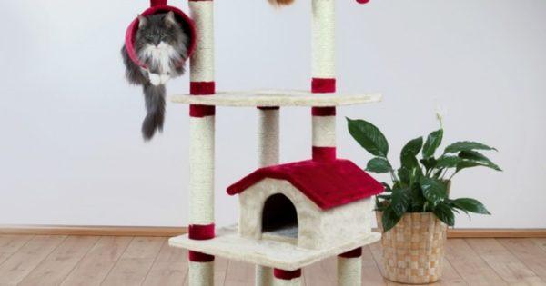Mobili Per Gatti Ikea : Tiragraffi per gatti la classifica dei migliori gattissimi