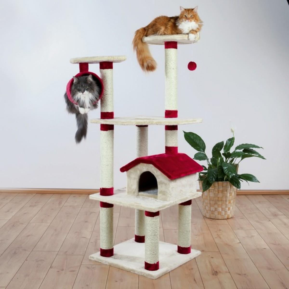 Cuccia Gatto Fai Da Te tiragraffi per gatti: la classifica dei 20 migliori - gattissimi