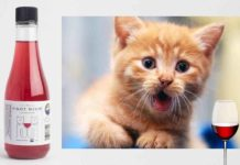 Pinot Meow e MosCATo, per brindare con il vostro gatto