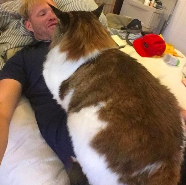 Samson, tredici chili di gatto