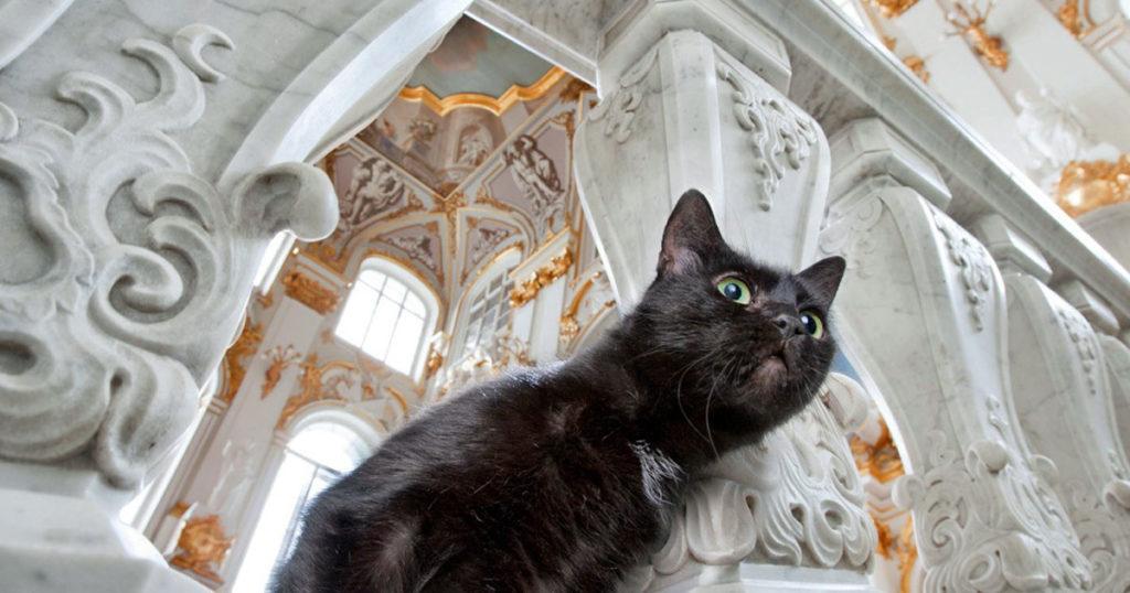 nomi russi per gatti