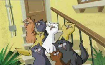 gatto puzzolone